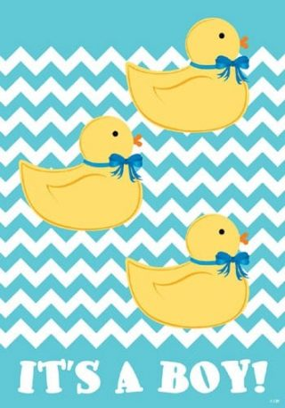 It Is A Boy Ducks Flag | Cool Flags | Celebration Flags | Double Sided Flag