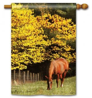 Out to Pasture House Flag | Fall Flags | Animal Flag | Yard Flag | Cool Flag