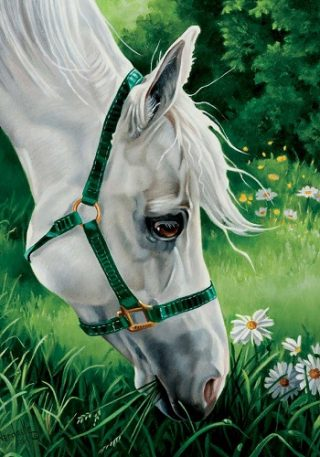 Meadow Horse Flag | Animal Flags | Spring Flags | Summer Flags | Flags