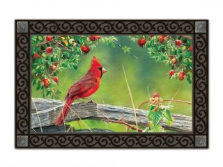 Cardinal Lookout Doormat | Doormats | MatMates | Decorative Doormats