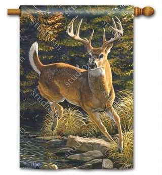 Whitetail Buck House Flag | Fall Flags | Wildlife Flags | Garden Flags | Flag