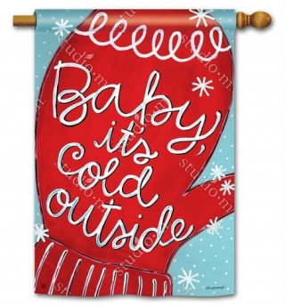 Baby It Is Cold House Flag | Winter Flags | Yard Flag | Cool Flags | Flags