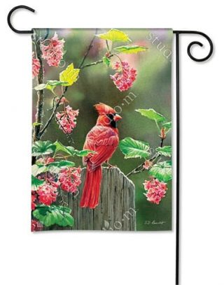 Cardinal Beauty Garden Flag | Bird Flags | Floral Flags | Spring Flags