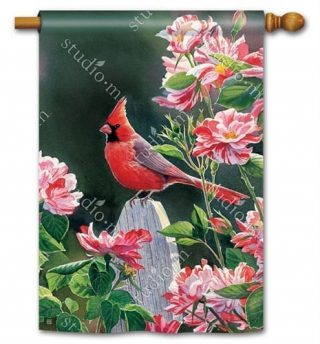 Cardinal with Variegated Roses House Flag   Bird Flags   Floral Flags