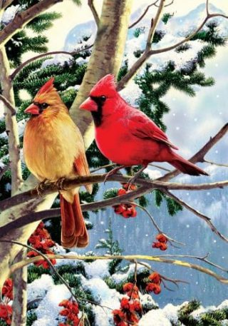 Cardinal Branch Flag | Winter Flags | Cardinal Flags | Bird Flags | Flags