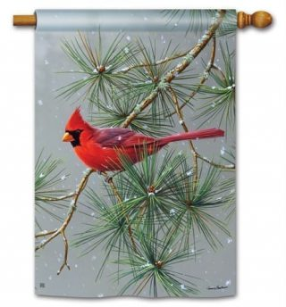 Winter Red Bird House Flag | Bird Flags | Winter Flags | Yard Flags | Flags