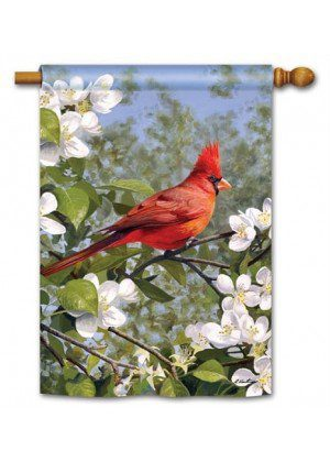 Cardinal in Blossoms House Flag | Bird Flags | Floral Flags | Yard Flags