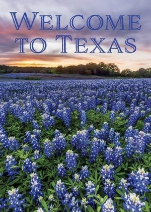 Welcome to Texas Flag | Decorative Flags | Flags | Garden House Flags