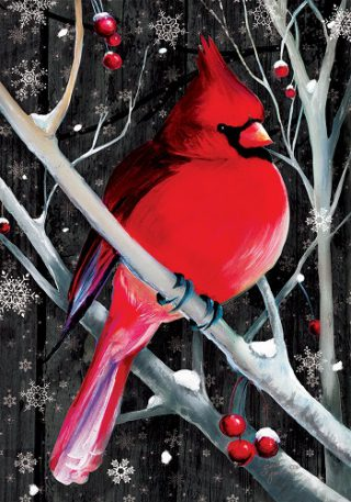 Midnight Cardinal Flag | Winter Flags | Bird Flags | Cardinal Flags | Flags