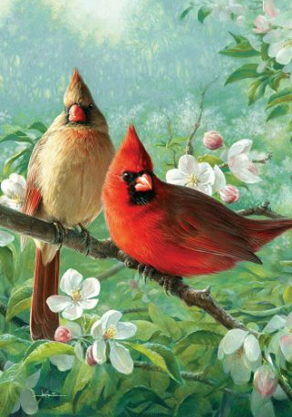 Cardinal Blossoms Flag | Spring Flag | Floral Flags | cool Flags | Bird Flags