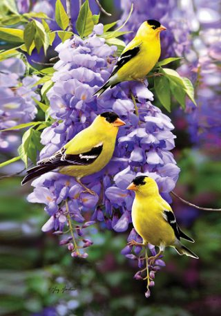 Goldfinch Wisteria Flag | Spring Flags | Floral Flags | Cool Flags | Bird Flag