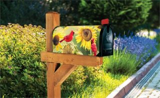 Sunflower Cardinal Mailbox Cover | Mailbox Covers | Mailwraps