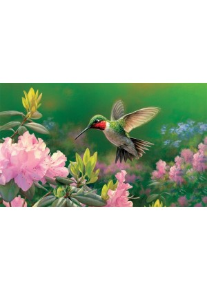 Hovering Hummer Doormat | Doormats | Decorative Doormats | Door Mats