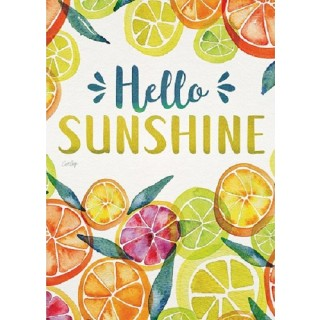 Main Squeeze Garden Flag | Welcome Flags | Two Sided Flags | Cool Flag