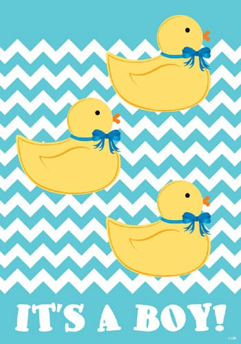 It Is A Boy Ducks Flag | Decorative Garden Flag | House Flag | Garden House Flags