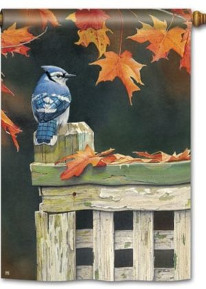 Autumn Blue Jay House Flag | Fall Flags | Bird Flag | Yard Flag | Cool Flag