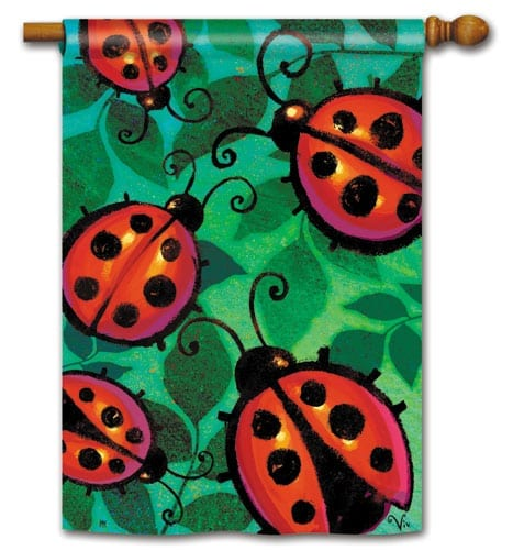 Ladybug Party House Flag