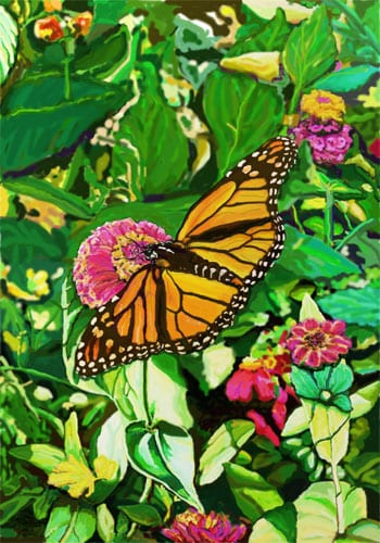 Monarch Butterfly Flag | House Flags | Garden Flag | Garden House Flags