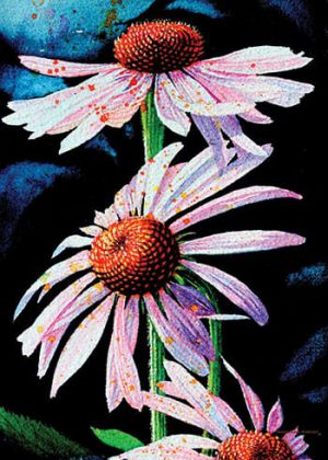 Purple Coneflowers Flag | Yard Flags | Garden Flags | Floral Flags