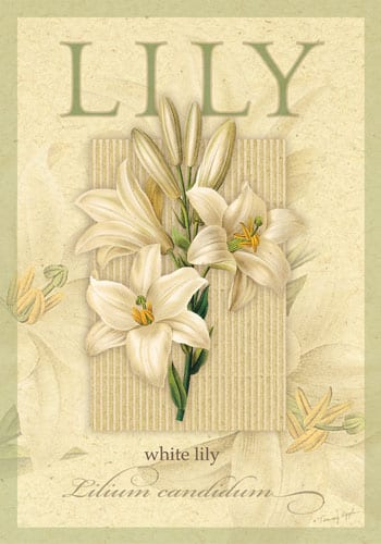White Lily Flag | Decorative House Flags | Garden Flag | Flag | Garden House Flags