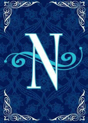Blue Teal Monogram-N Flag | Monogram Flags | Winter Flags | Yard Flags