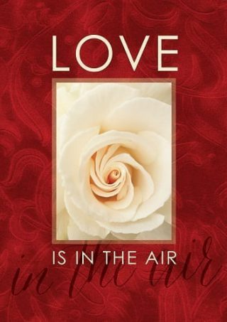 Love Is In The Air Flag | Valentine's Day Flags | Inspirational Flags